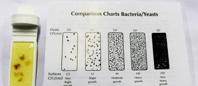 Dipslide Comparison chart testing