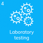 Send coronavirus saliva test sample to the laboratory